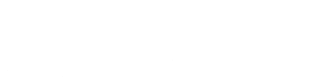 Univerasl Security Store Logo